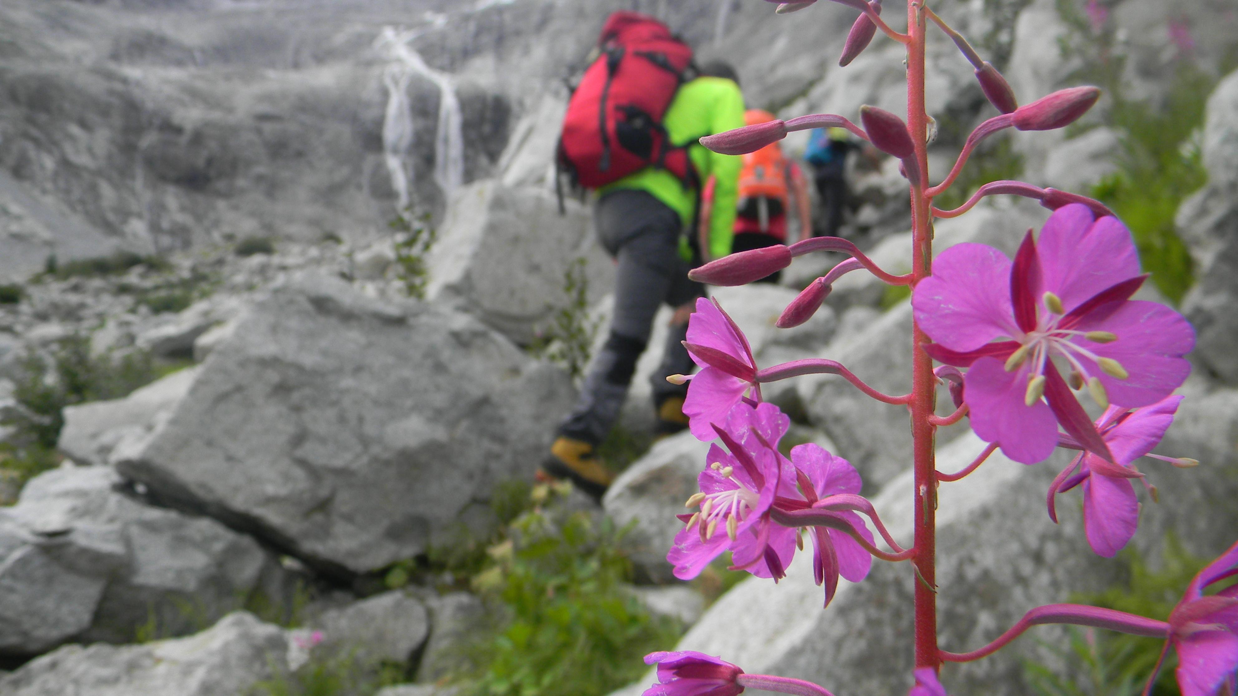 Ritiri spirituali in montagna (al Gaver)